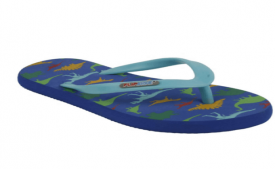 Buy Flipside Blue Slippers & Flip Flops at Rs 9 Only