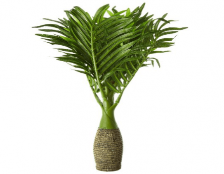 Buy Fourwalls Synthetic Artificial Bonsai Palm Plant at Rs 399 Only